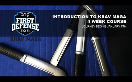 January Introduction to Krav Maga Course